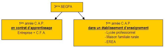 orientationap3segpa